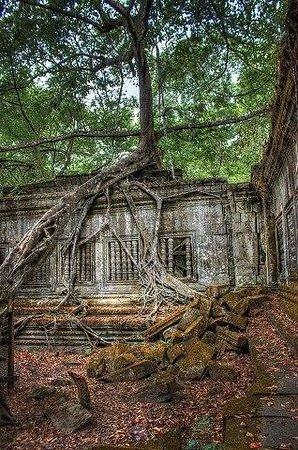 Sun Sothy Guesthouse: Angkor Wat