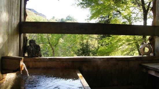 Sakoya : Vue depuis le onsen extérieur