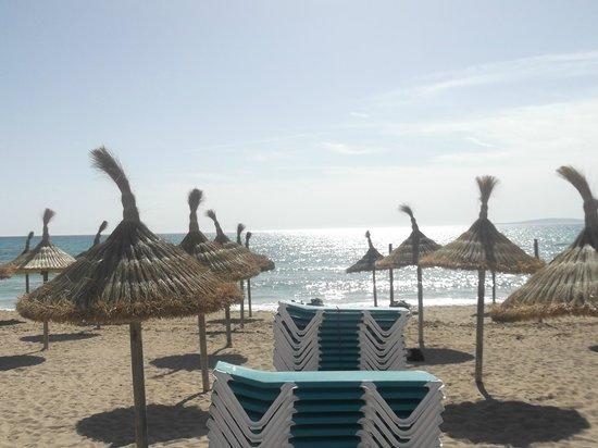 Playa Golf: vue de l'Hôtel
