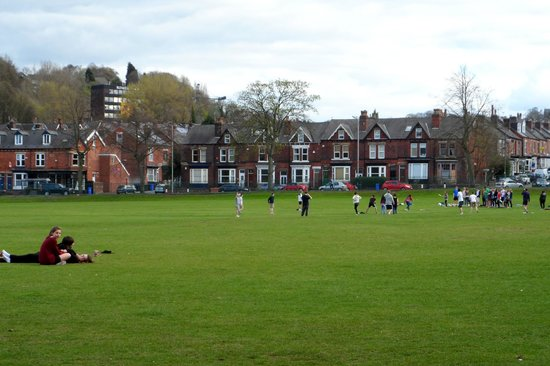 Endcliffe Park: people playing a rugby