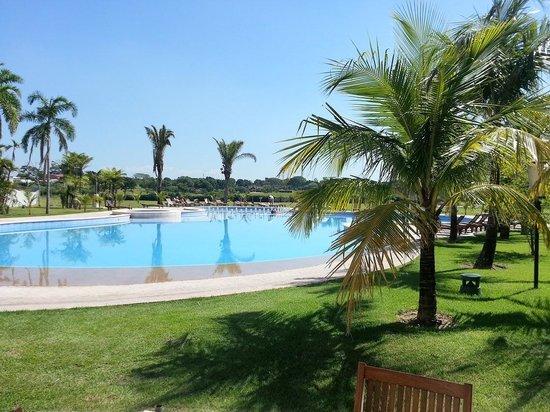 Sun Hotel : The pool & the garden