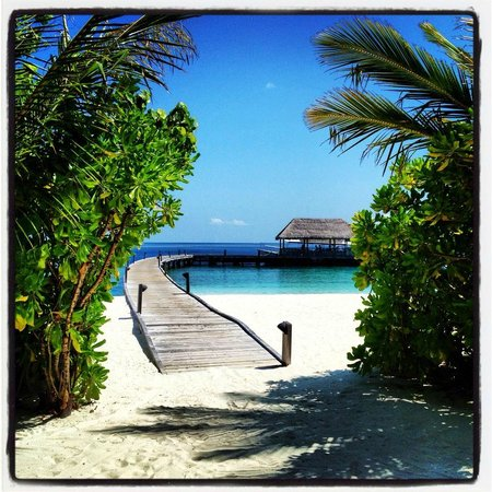 Cocoa Island by COMO : View of the hotel jetty from the reception