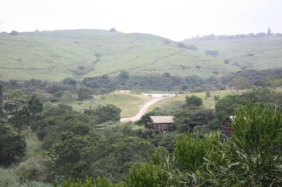 Rain Farm Game and Lodge: View from tent