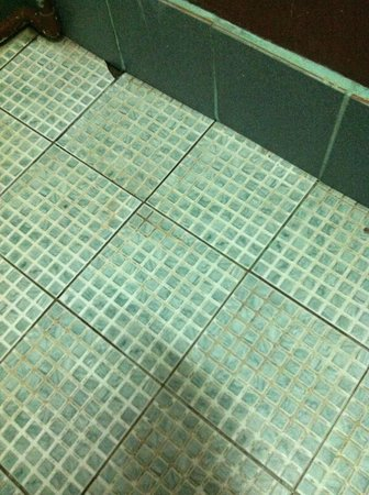 Duenshine Resort: River cabin bathroom floor