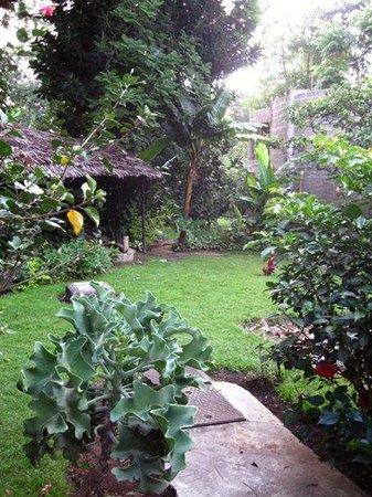 Le Jacaranda Hotel: Back courtyard