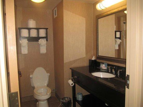 Hampton Inn Lagrange near Callaway Gardens: bathroom