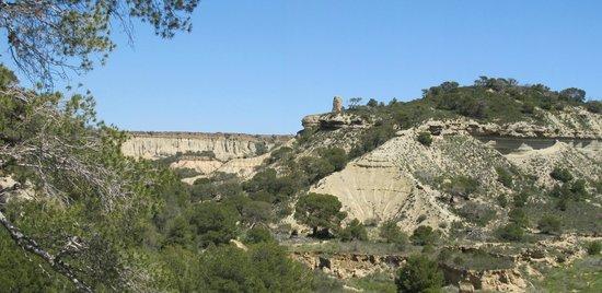 Casas Cuevas Bardeneras: Bardenas reales