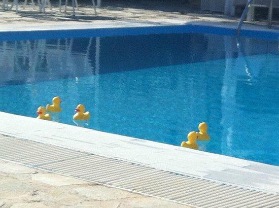 Home Hotel: piscina con le paperette di Angelos