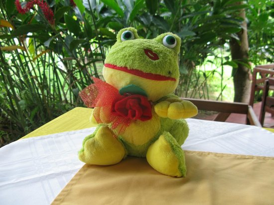 Hotel Jaguar : A cute Green Frog was sitting on every table