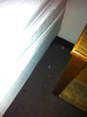 Select Inn of Minot: More NON vacuumed areas.