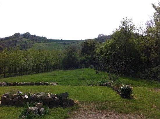 Agriturismo Montelovesco : distese verdi