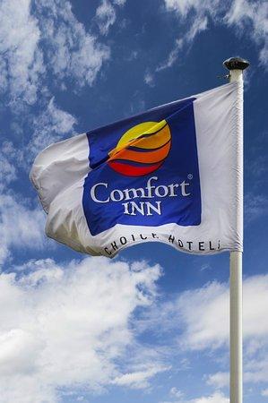 Comfort Inn Arundel: .