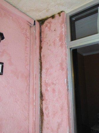 Senegambia Beach Hotel: mould L11