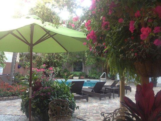 The Duval Inn: The courtyard/pool area 2