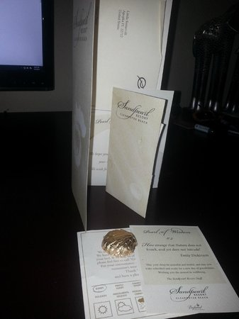 Sandpearl Resort: Check out booklet