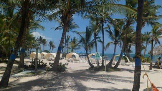 Decameron Marazul: Playa