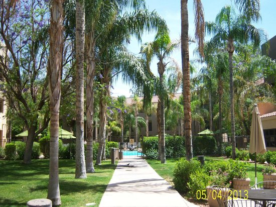 Embassy Suites by Hilton Hotel Phoenix - Tempe: Pool and Courtyard