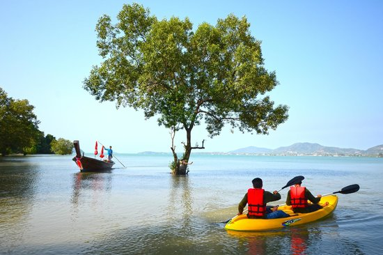 The Mangrove Panwa Phuket Resort: Kayak on a sunny day