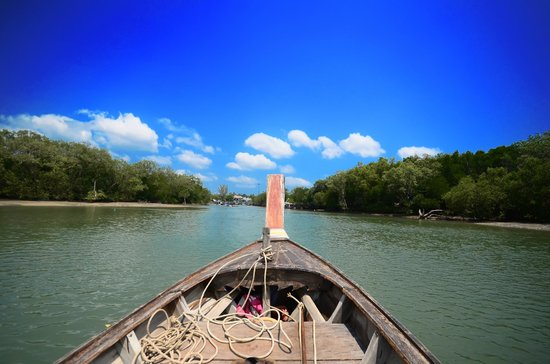 The Mangrove Panwa Phuket Resort: Longtail through the mangroves