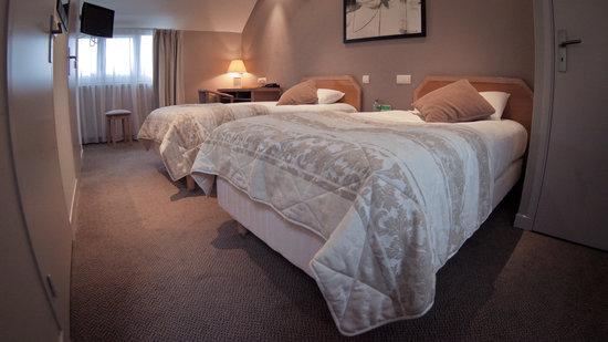 Hotel des Voyageurs : Chambre Twin