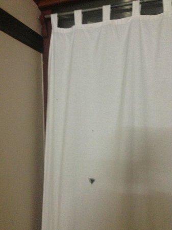 Green Jungle Holiday Resort : Torn curtain