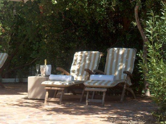 Somerset Villa Guesthouse: Garden