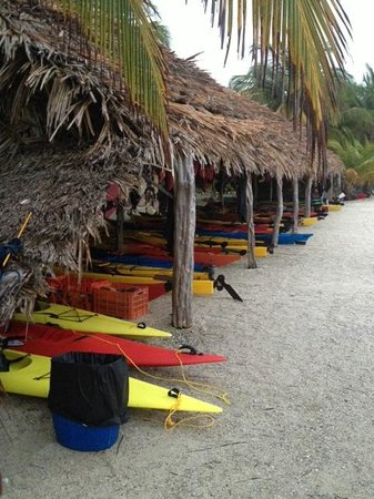Long Caye Resort: TOYBOX