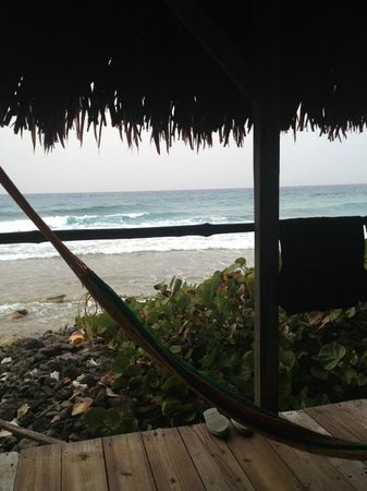 Long Caye Resort: VIEW FROM ROOM