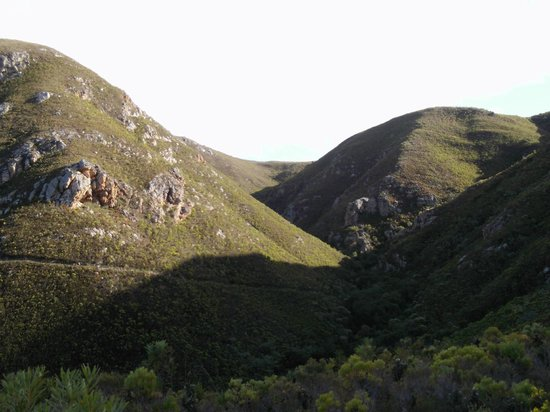 Fernkloof Nature Reserve: the view