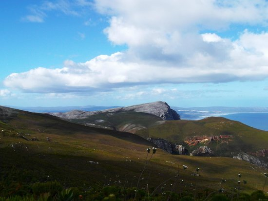 Fernkloof Nature Reserve: another view