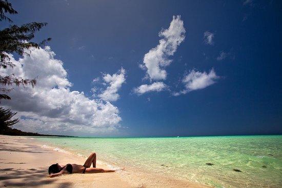 Blue Horizon Resort : Bambarra Beach
