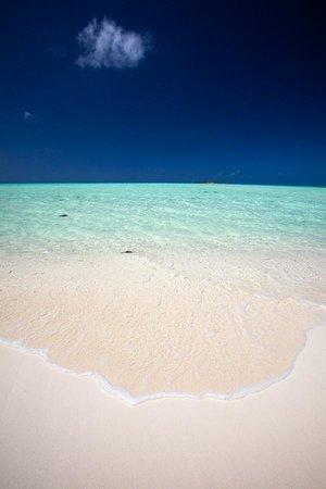 بلو هورايزون ريزورت: Bambarra Beach