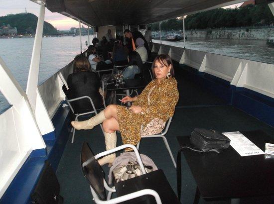 Danube River: Battello con cena e giro serale sul Danubio