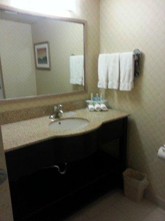 هوليداي إن إكسبريس هوتل آند سويتس ريفر: Well appointed bathroom with toiletries