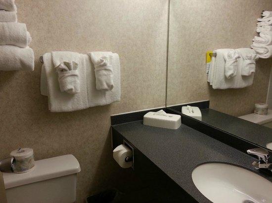Days Inn - Victoria on the Harbour: Tiny bathroom