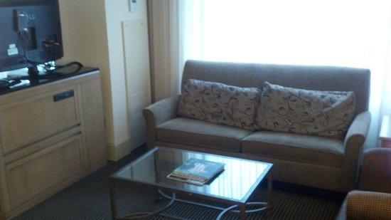 Hyatt Regency Dulles: Living room area