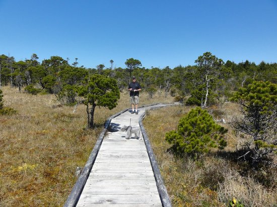 Water's Edge Shoreside Suites: Bog Walk - a short drive from the resort
