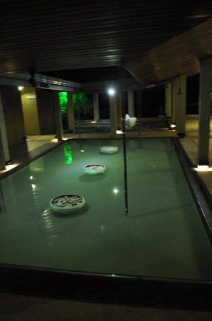 Giritale Hotel: Halle de l'hotel
