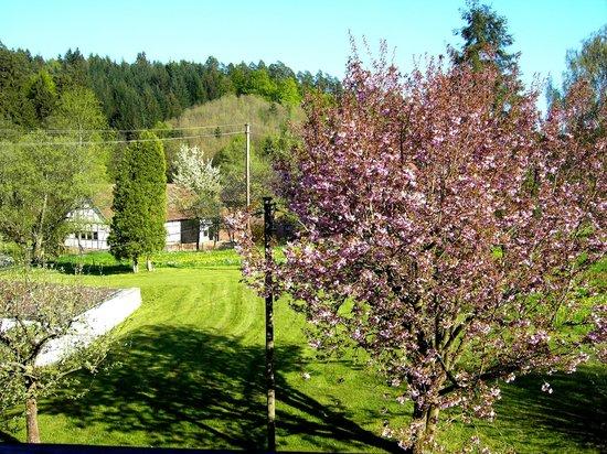 Gasthof Ohrnbachtal: Blick aus unserem Zimmer