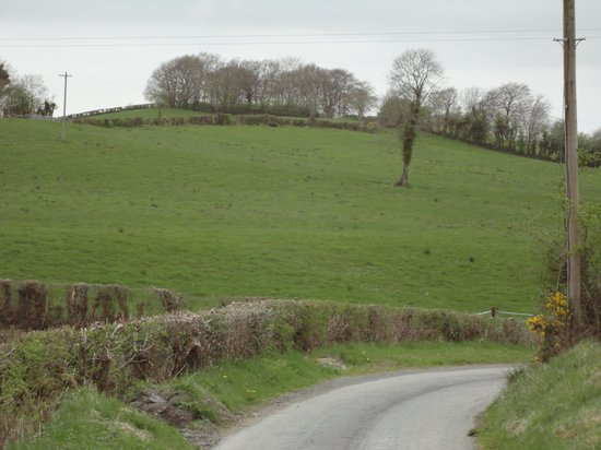 Killyliss Country House : Along the Killyliss country road