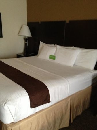 La Quinta Inn & Suites Memphis Wolfchase: King room.  1st floor.