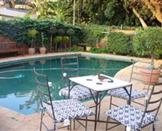 Swimming pool area picture of coral tree house pretoria for Swimming pool area