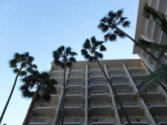 Town and Country San Diego: The beautiful Hotel grounds