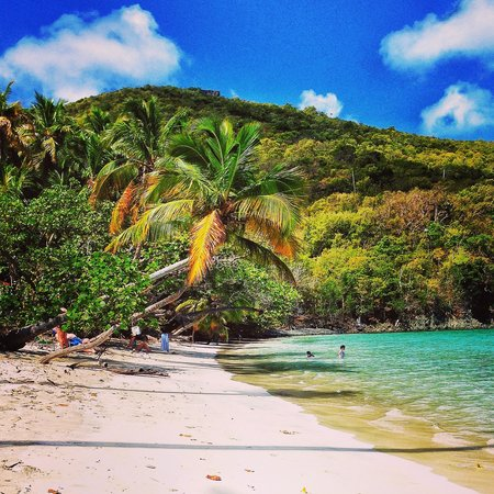 best beaches in the caribbean travelers choice awards tripadvisor rh tripadvisor com