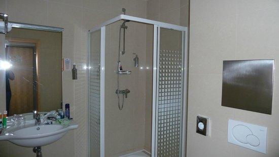 BEST WESTERN Hotel Pav: bathroom