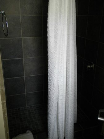 Found Hotel San Diego: shower