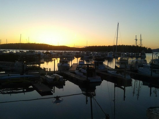 ‪‪Roche Harbor Resort‬: Sunset Dinner view from McMillin's restaurant‬