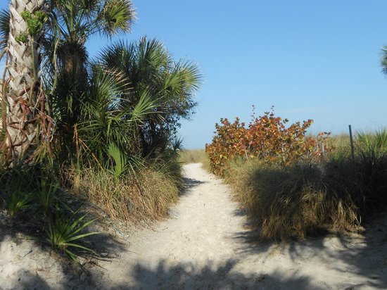 Siesta Key Inn: Path to Beach