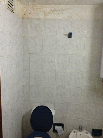Les Chalets Apart Hotel: Baño, más humedad