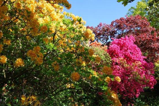 Holehird Gardens: Holehird, Windermere